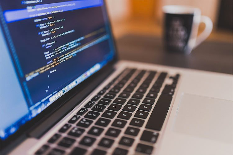 How to Become a Web Developer in 5 Easy Steps